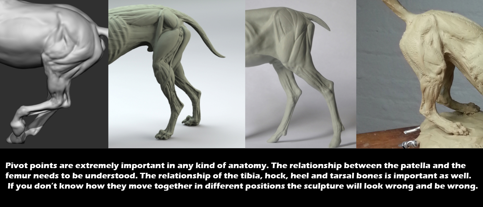 5 killer tips for sculpting believable creatures | CG Channel